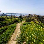 Hiking In Tarifa