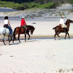 Horse riding in Tarifa